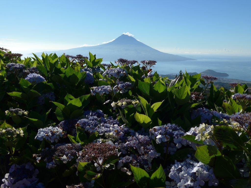 Azoren – Besteigung des Vulkans Pico